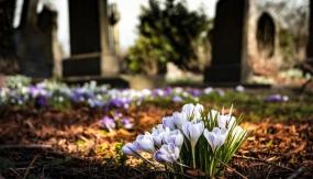 Ogres katoļu un luterāņu draudžu kapusvētki 2021.gadā