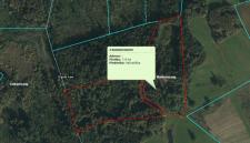 Elektroniskā izsole kustamai mantai – 5 (piecas) mežaudžu cirsmas Madlienas pagastā