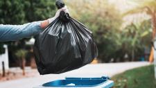 Zaļo dārza atkritumu šķirošanas iespējas Ogres pilsētā